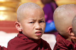 Monk At Shwezigon Pagoda