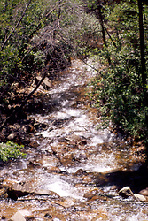 Rocky Mountain water falls Note: This image was originally produced on film and scanned to produce a digital file.  Some dust may be visible from that scan