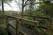 A footpath leading towards an area of Calvert Jubilee nature reserve cleared of trees and vegetation by contractors working on behalf of HS2 Ltd is pictured on 6 October 2020 in Calvert, United Kingdom. HS2 Ltd seized possession of the eastern side of the nature reserve, which is maintained by the Berks, Bucks and Oxon Wildlife Trust (BBOWT) and is home to bittern, breeding tern and some of the UK's rarest butterflies, on 22nd September in order to carry out clearance works in connection with the HS2 high-speed rail link.