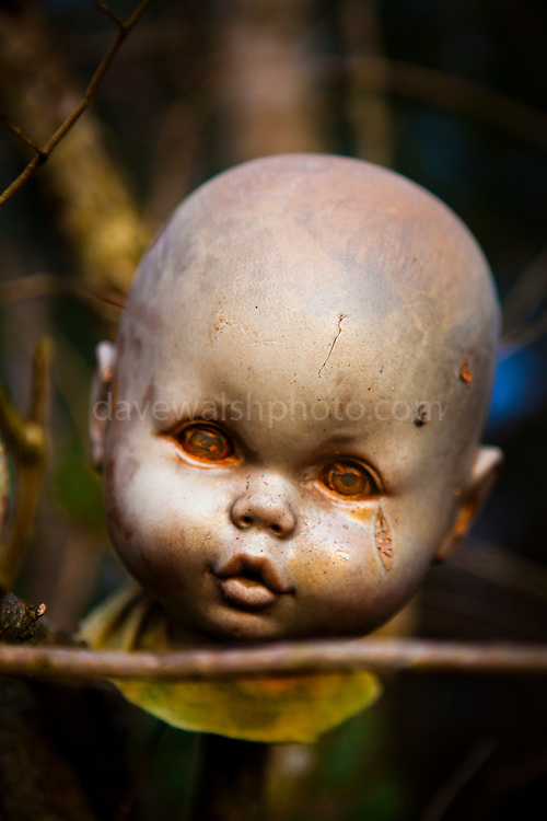 Doll head - abandoned toys washed up on beach