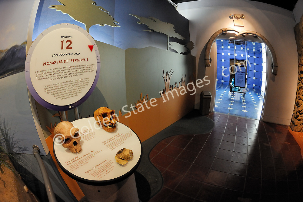 The Museum of Man is devoted to anthropology with an emphasis on the peoples of North and South America.