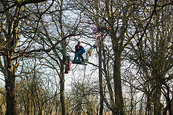 Harefield, UK. 21 January, 2020. An activist prepares to unfurl a canopy from a net suspended between trees at the Save the Colne Valley wildlife protection camp. Activists seeking to protect ancient woodland threatened by the HS2 high-speed rail link continue to occupy both the roadside and woodland sites of the camp having retaken it from bailiffs acting on behalf of HS2 on 18th January. 108 ancient woodlands are set to be destroyed by HS2.