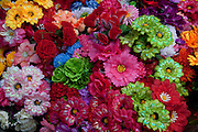 Silk flowers, Mazatlan, Sinaloa, Mexico
