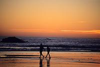 A couple hikes along the beach in Olympic National Park, Washington.