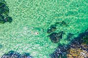 Man Snorkeling off the Coast of Laguna Beach