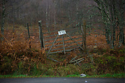A sign for a tea room on a wooden gate on the 23rd November 2011 in the United Kingdom.