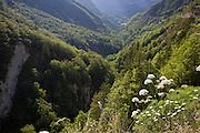 A valley near Col de la Faucille, Jura region, France