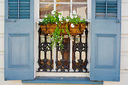 A window box of flowers and blue shutters on a house in the French Quarter in New Orleans, Louisiana.