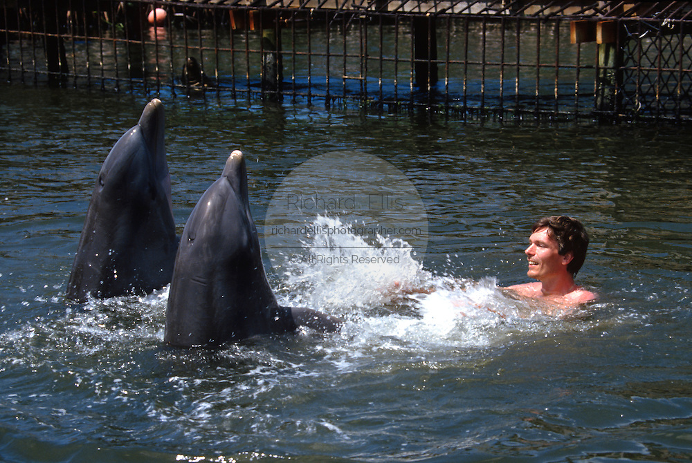 A tourist plays in the water with a bottle nose dolphin at the Dolphin Research Center  June 27, 1996 in Marathon Key, FL.  The center is where the original Flipper was trained and specializes in returning trained dolphins to the wild.
