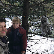 Great Gray Owl, (Strix nebulosa)  7 year old Colter Hyde and wildlife photographer Daniel J. Cox  with fledgling chick. Montana.