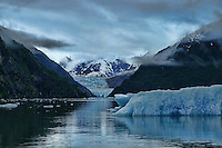Iceberg & South Sawyer Glacier, Tracy Arm Fjord, Alaska