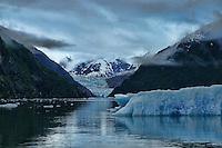 Iceberg & South Sawyer Glacier, Tracy Arm Fjord, Alaska