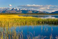 Tanada Peak, Wrangell-St. Elias National Park Alaska