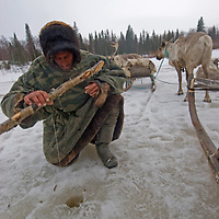 North of the Arctic Circle in Russia, Piotr Terentév, a nomadic Komi reindeer herder, fishes with primitive gear through a hole chopped in a frozen stream.
