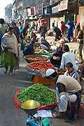 Old Delhi, Daryagang fruit and vegetable market on sale, India