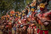 Huli tribe, Goroka festival, 140 ethnic tribes come together for three day Sing sing, Goroka, Eastern Highlands, Papua New Guinea