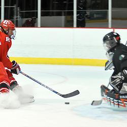 College Ice Hockey - Rutgers vs. Binghamton