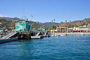 Green Pleasure Pier at Avalon Harbor Catalina Island