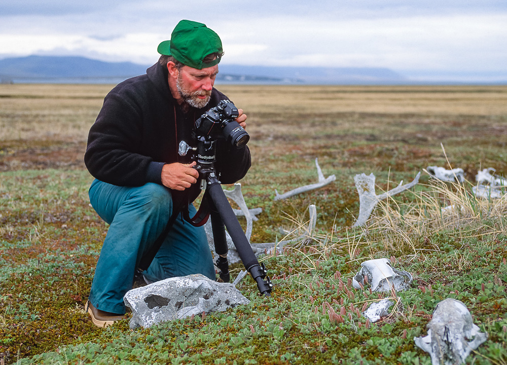 Pat O'Hara photographs weatered bones, Mechigmen Archeological Site, Chukotsk Peninsula, Russia. Photo by Dave Wukasch, 1992