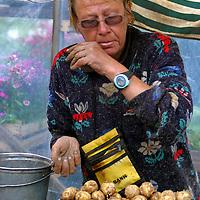 Europe, Latvia, Riga. A Latvian potato farmer markets her spuds at the Riga Market.
