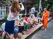 "12 MARCH 2016 - LUANG PRABANG, LAOS: Tourists give alms to and photograph Buddhist monks during the morning tak bat in Luang Prabang. Luang Prabang was named a UNESCO World Heritage Site in 1995. The move saved the city's colonial architecture but the explosion of mass tourism has taken a toll on the city's soul. According to one recent study, a small plot of land that sold for $8,000 three years ago now goes for $120,000. Many longtime residents are selling their homes and moving to small developments around the city. The old homes are then converted to guesthouses, restaurants and spas. The city is famous for the morning ""tak bat,"" or monks' morning alms rounds. Every morning hundreds of Buddhist monks come out before dawn and walk in a silent procession through the city accepting alms from residents. Now, most of the people presenting alms to the monks are tourists, since so many Lao people have moved outside of the city center. About 50,000 people are thought to live in the Luang Prabang area, the city received more than 530,000 tourists in 2014.       PHOTO BY JACK KURTZ"