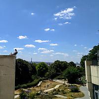 L'été à Paris, avec ses grandes chaleurs, est toujours l'occasion d'aller chercher un peu de fraîcheur dans les parcs. En ce jour de début juillet, les courageux allaient jusqu'à pique-niquer au soleil, alors que moi j'avais hâte<br /> d'aller à l'ombre.<br /> Et pendant ce temps, les pigeons admiraient la Tour Eiffel. Quoi de plus parisien ?<br /> <br /> Summer in Paris, with its heat waves, is always the time to head over to parks, hoping to find some coolness. On this day in early July, the courageous were picnicking in a sunny area, but I just had to quickly find some shade.<br /> In the meantime, pigeons were admiring Eiffel Tower. Can it get more Parisian?