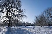 Winter scene of a crow flying in the snow in Highbury Park in Kings Heath on 25th January 2021 in Birmingham, United Kingdom. Deep snow arrived in the Midlands giving some light relief and fun during the current lockdown for people who simply enjoyed the weather.
