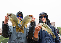 Nate Roberts and Andrew Cogliano of Winnacunnet High School weigh in their catch of wide and small mouth bass caught during the NHIAA State Bass Fishing Tournament on Lake Winnisquam Saturday.  (Karen Bobotas/for the Laconia Daily Sun)