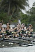 2004 Miami Hurricanes Rowing