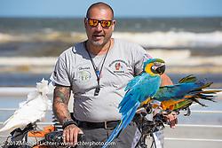 Orlando Birdman Hector with his rescue birds Boardwalk bike show during Biketoberfest. Daytona Beach, FL, USA. Thursday October 19, 2017. Photography ©2017 Michael Lichter.