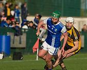 Kildalkey v Na Fianna Meath SHC 2021 Round 4