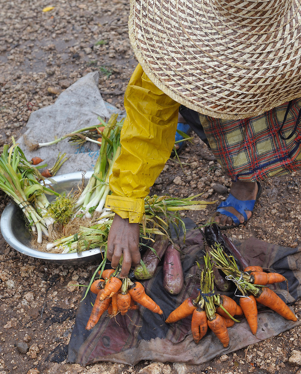 A woman sells carrots in a market in Mizak, a small village in the south of Haiti.