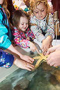02/07/2017 REPRO FREE:   Ellen Joyce and Lily Faherty from Moycullen  with a star fish at the explorers stand at Seafest 2017, the National Maritime Festival which  in Galway.<br /> . Photo:Andrew Downes, xposure .