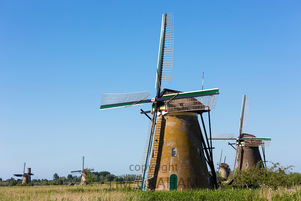 Group of authentic windmills at Kinderdijk UNESCO World Heritage Site, dykes and polder, Holland, The Netherlands