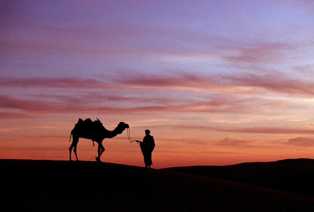 Man with camel on the Sam Sand Dunes at sunset, in the Thar Desert, near Jaisalmer, Rajasthan, India