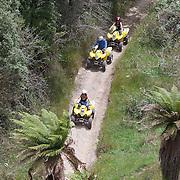 People riding through a quad bike course near Taupo with Taupo Quad Bikes. Taupo, New Zealand. 7th January 2011. Photo Tim Clayton