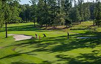 EINDHOVEN   - hole 7,  Golfbaan Welschap.   COPYRIGHT KOEN SUYK