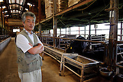 CEO Kazutaka stands in a cow shed at Maruse Stockbreeding Inc, Hyogo Prefecture, Japan, June 25, 2009.