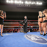 """Ring girls pose during the """"Boxeo Telemundo"""" boxing match at the Kissimmee Civic Center on Friday, March 14, 2014 in Kissimmme, Florida. (Photo/Alex Menendez)"""
