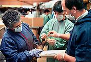 Frankrijk,Vannes, 10-01-2000Geredde vogels in de opvang. Olievervuiling door het zinken van de olietanker Erica en de schoonmaak door vrijwilligers. De oliemaatschappij Total staat nu, vanaf 12-2-2007 terecht voor de gevolgen. Veel hulpverleners hebben een verhoogde kans op kanker, omdat destijds met beperkte bescherming werd gewerkt, en tienduizenden vogels kwamen om vanwege dit ongeluk met deze tanker voor de kust.Foto: Flip Franssen