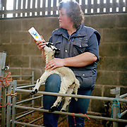 North York Moors hill farmer, Sarah Dunn feeds a pet lamb with a bottle of milk, Breck House Farm, Bransdale, North Yorkshire, UK