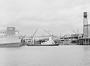October 16, 1967. ship Western Comet at Albina Engine & Machine ways.
