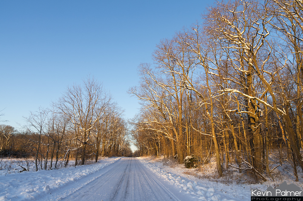 Morning sunlight illuminates the trees above a snowy road in Sand Ridge State Forest.<br />