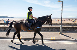 © Licensed to London News Pictures; 25/05/2020; Weston-super-Mare, UK. A police horse on patrol. General views today of crowds on Weston's beach and promenade on a spring bank holiday Monday. Weston General Hospital has said it is temporarily closed to new admissions including for A&E due to the high number of Covid-19 coronavirus patients it is caring for in the hospital. Last week there was concern in Weston-super-Mare about the high number of visitors to the beach and seafront during the warm weather. Photo credit: Simon Chapman/LNP.