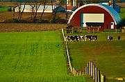 Berks County Farms, PA, USA