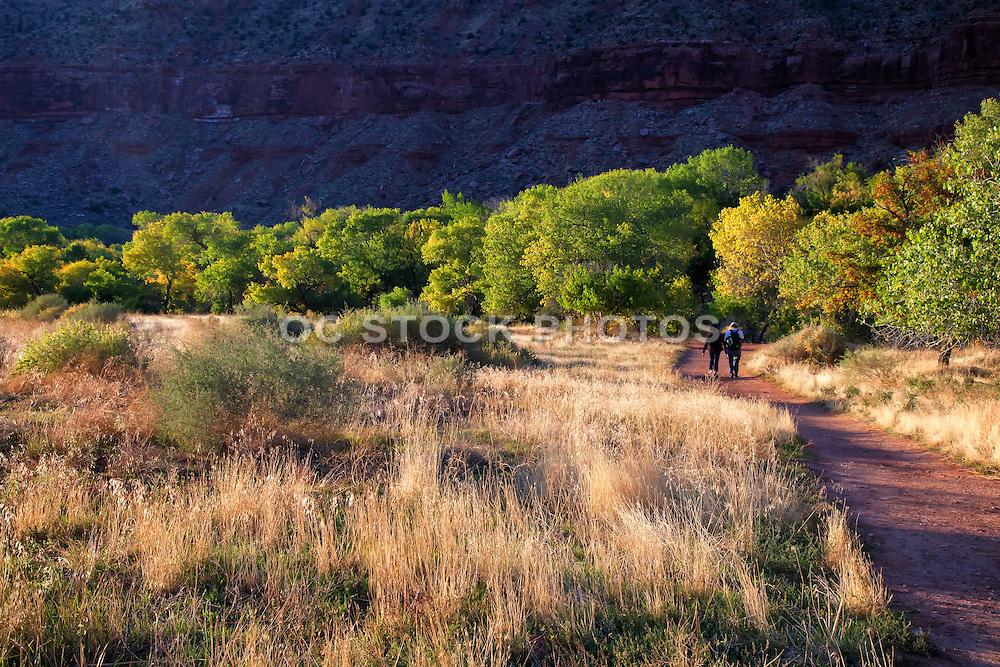Hiking in Zion National Park Utah