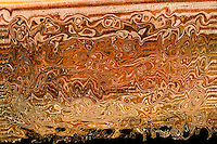 abstract wood with broken lines in brown color with many shades and tones of brown in rough texture