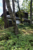 The Korekiyo Takahashi House Garden was once located in Akasaka Tokyo and moved to Koganei Park to the Edo Tokyo Open Air Architectural Museum - an ambitious exhibition that has relocated, reconstructed historical buildings and gardens of cultural value that would have been impossible to preserve in their original places.  This undertaking was to show these valuable architectural heritage for future generations.
