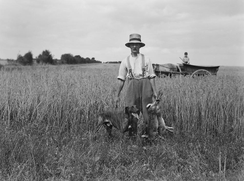 Hares, Mr A.G. Street's farm, Wiltshire, England, circa 1933