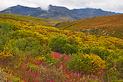 Autumn in the Ogilvie Mountains, part of the Yukon Ranges. Dempster Highway.<br />